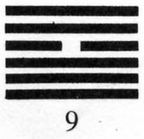 Hexagram 9