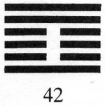 Hexagram #42