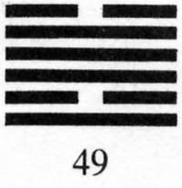 Hexagram 49